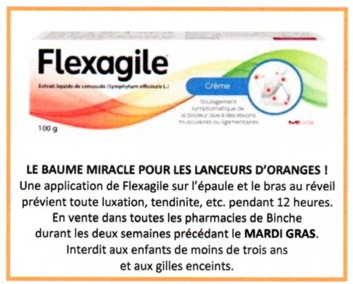 Dejaeger - Flexagile scan.jpg