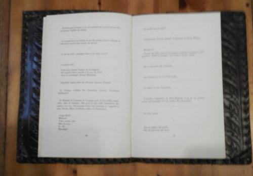Liseuse 2.jpg
